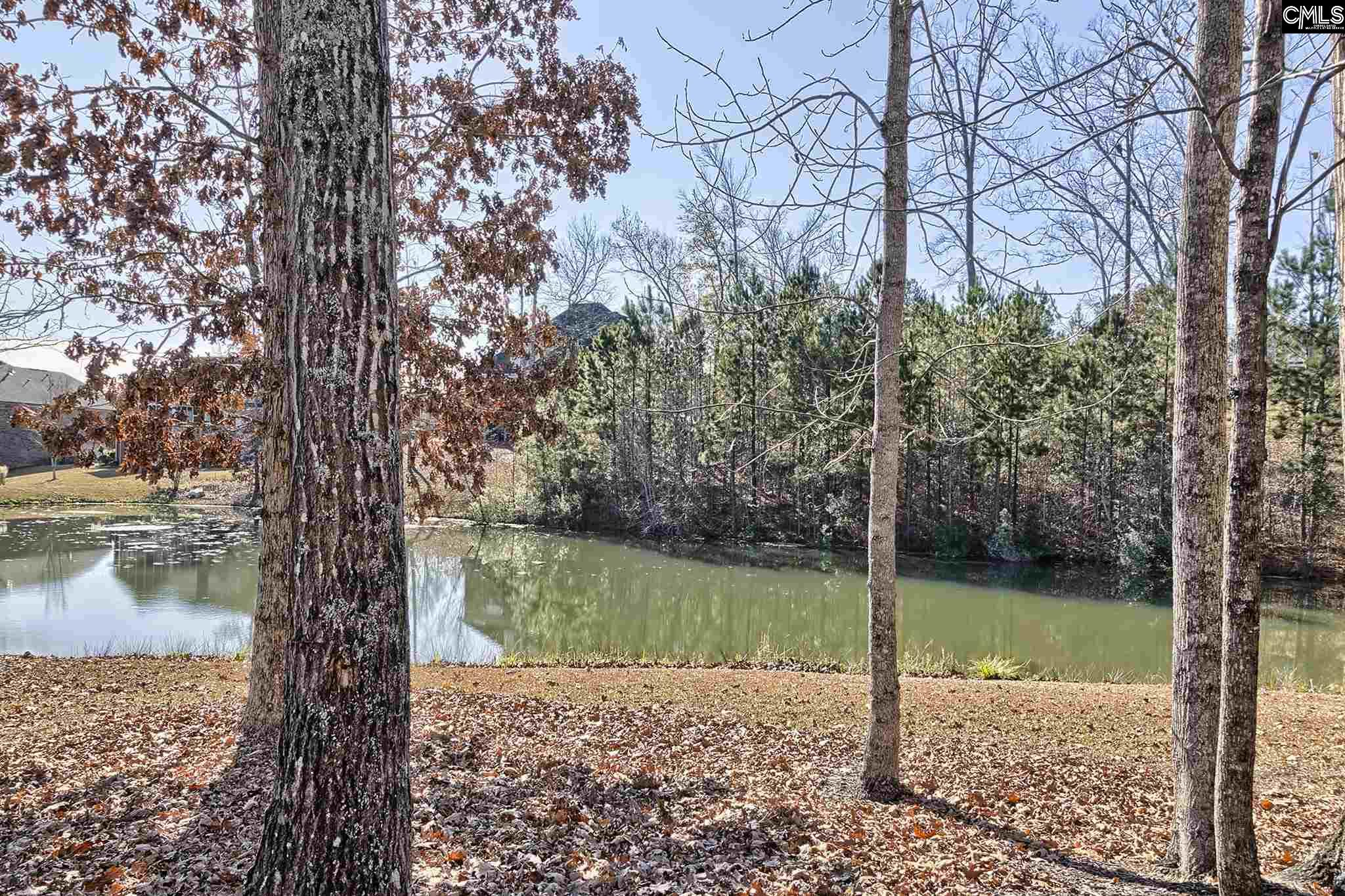 438 Holly Berry Blythewood, SC 29016