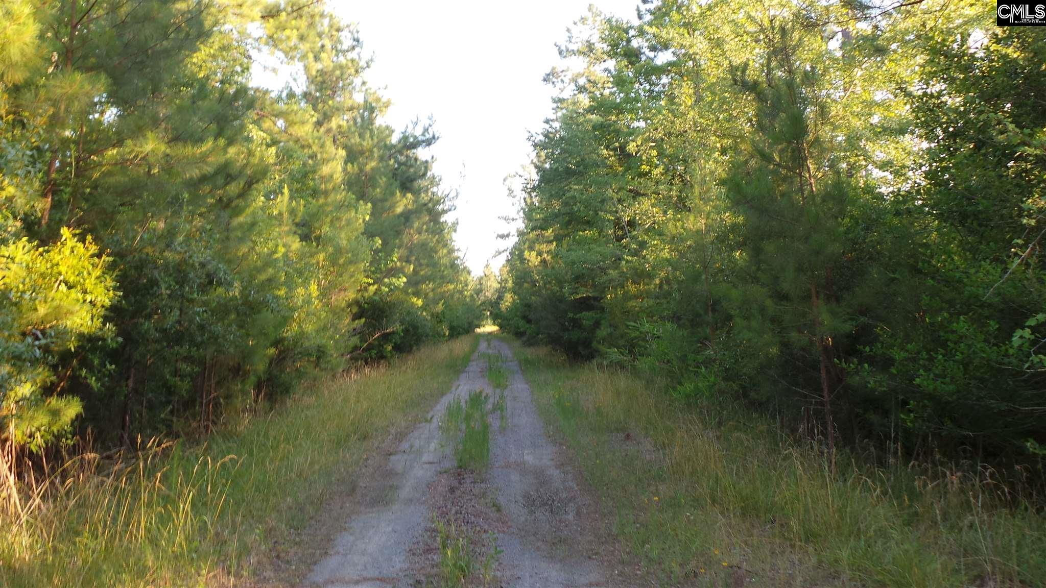 Hemmingway Loris, SC 29568