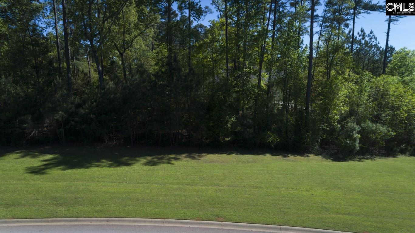101  Water Links Chapin, SC 29036