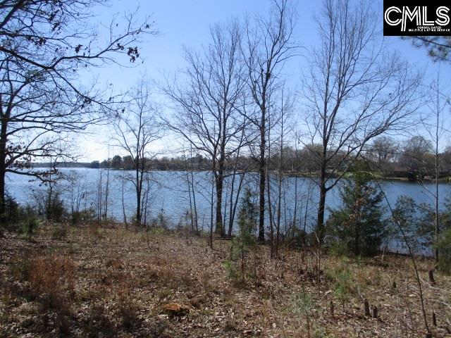 1213  Forest Shealy Road Chapin, SC 29036