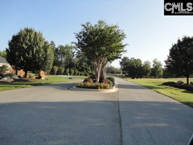 112  Sease Meadow Gilbert, SC 29054
