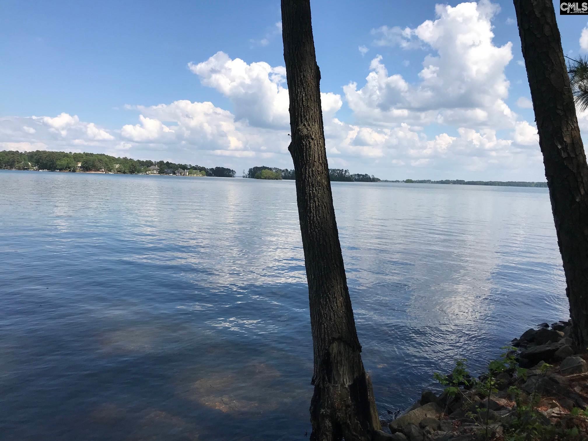 445  Lake Estate Chapin, SC 29036