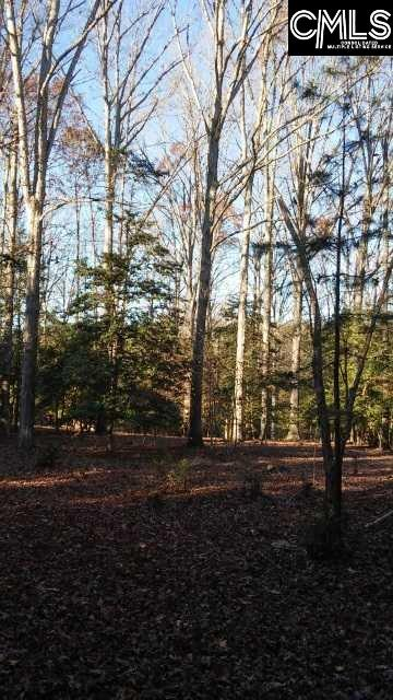 1748  Wash Lever #1 Chapin, SC 29036