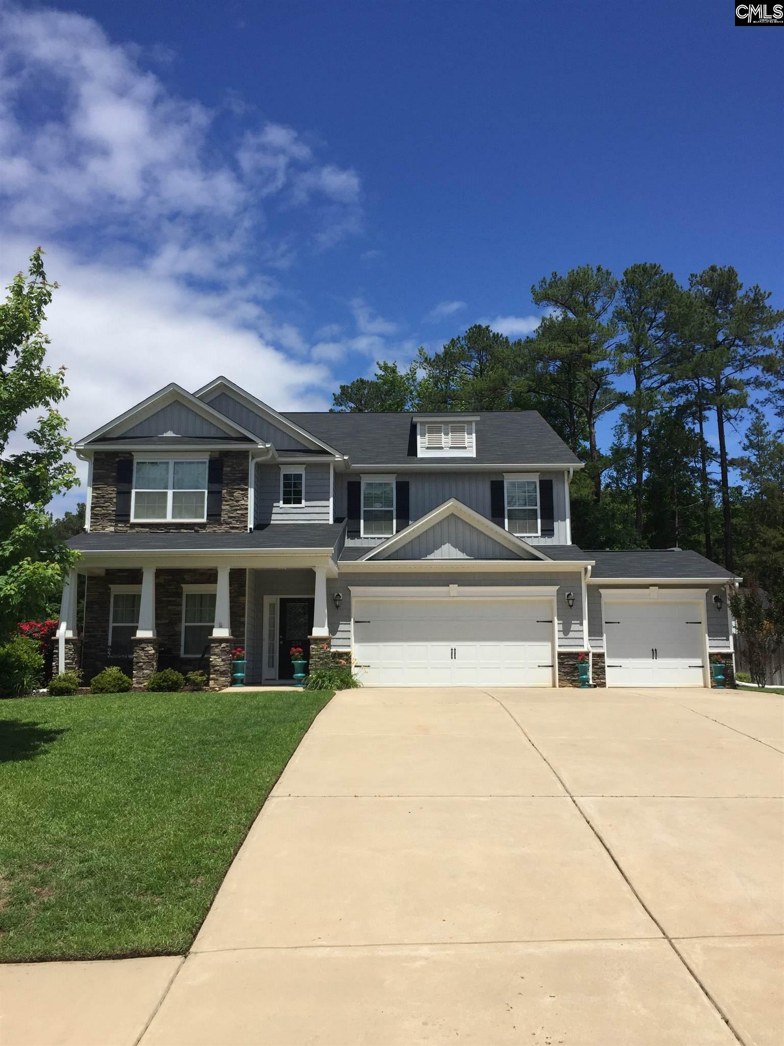 234  Woolbright Chapin, SC 29036