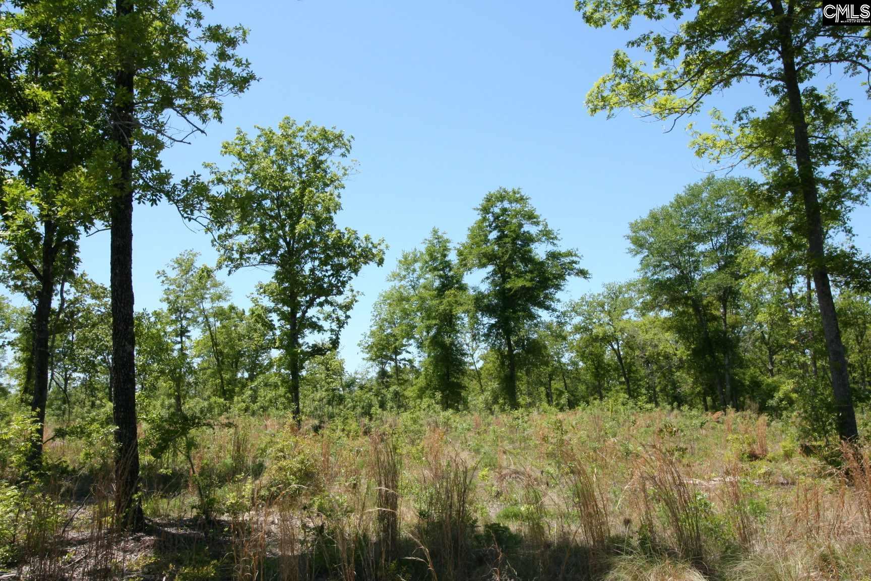 Browns Pond Wagener, SC 29164