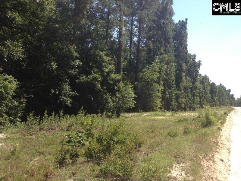 153 Cedar Branch Gilbert, SC 29054