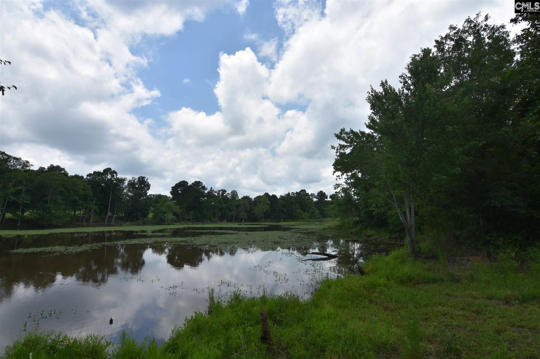 Lewis Waters Leesville, SC 29070