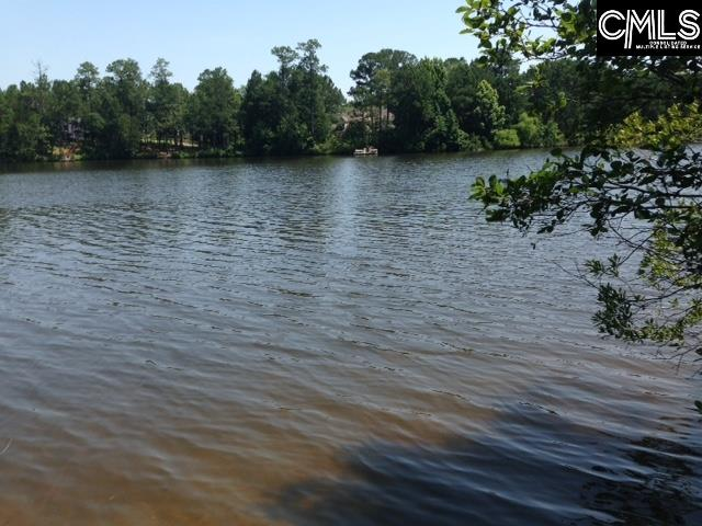 5 Shoreline #Lot # 3 Columbia, SC 29229