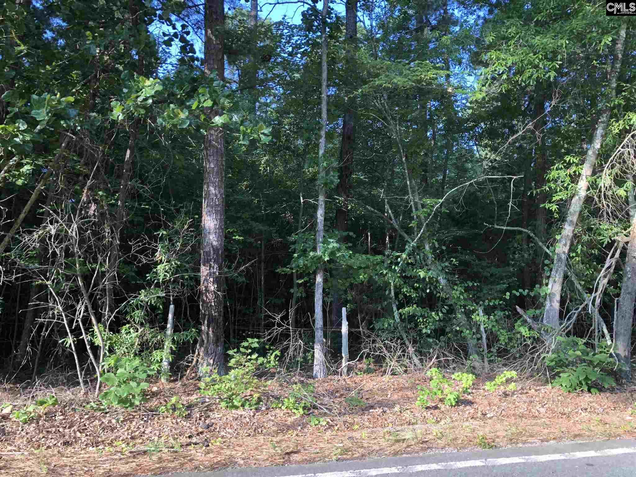 Long Pine Chapin, SC 29036