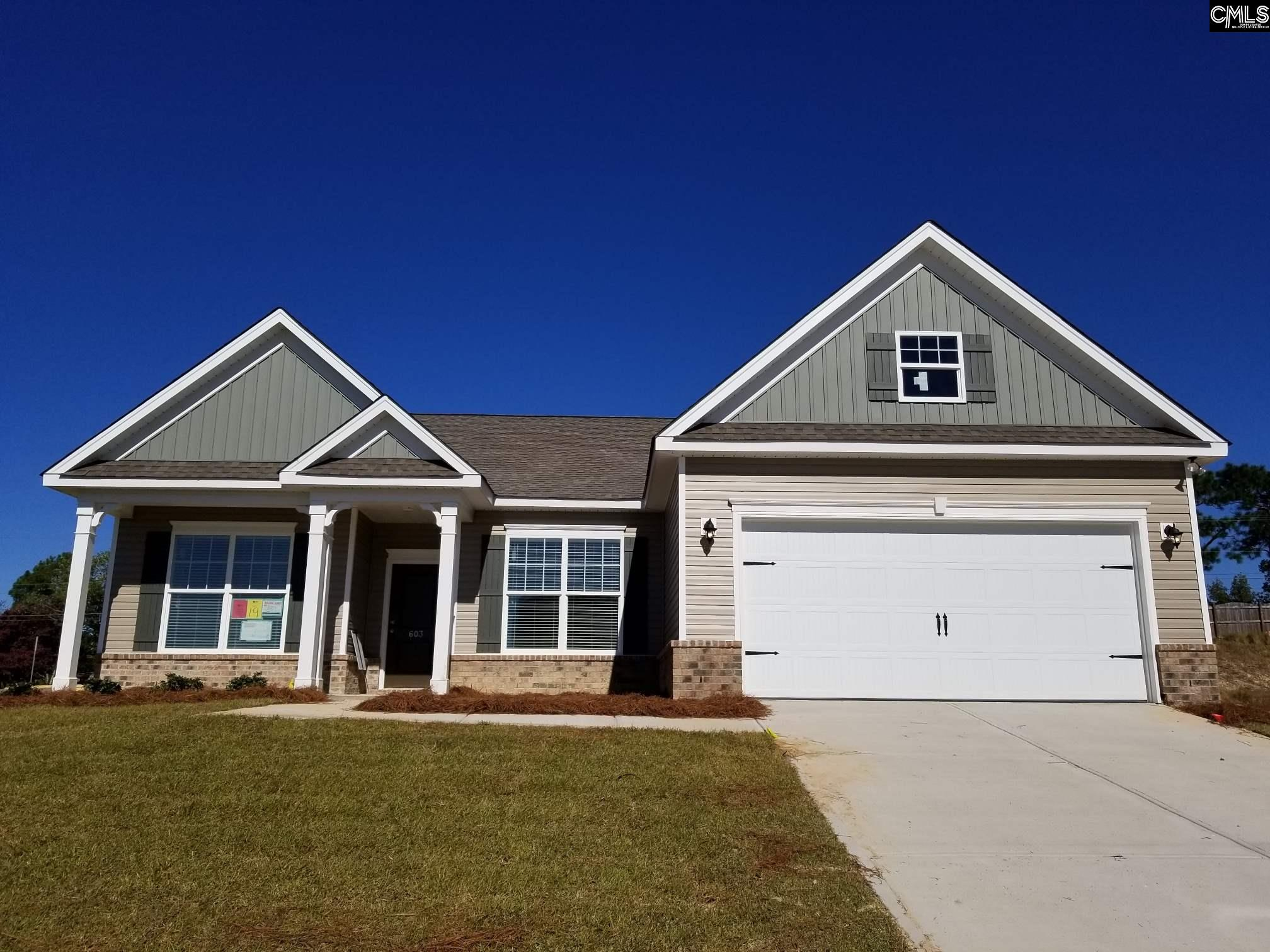 603 Robinhaven #19 Lexington, SC 29073