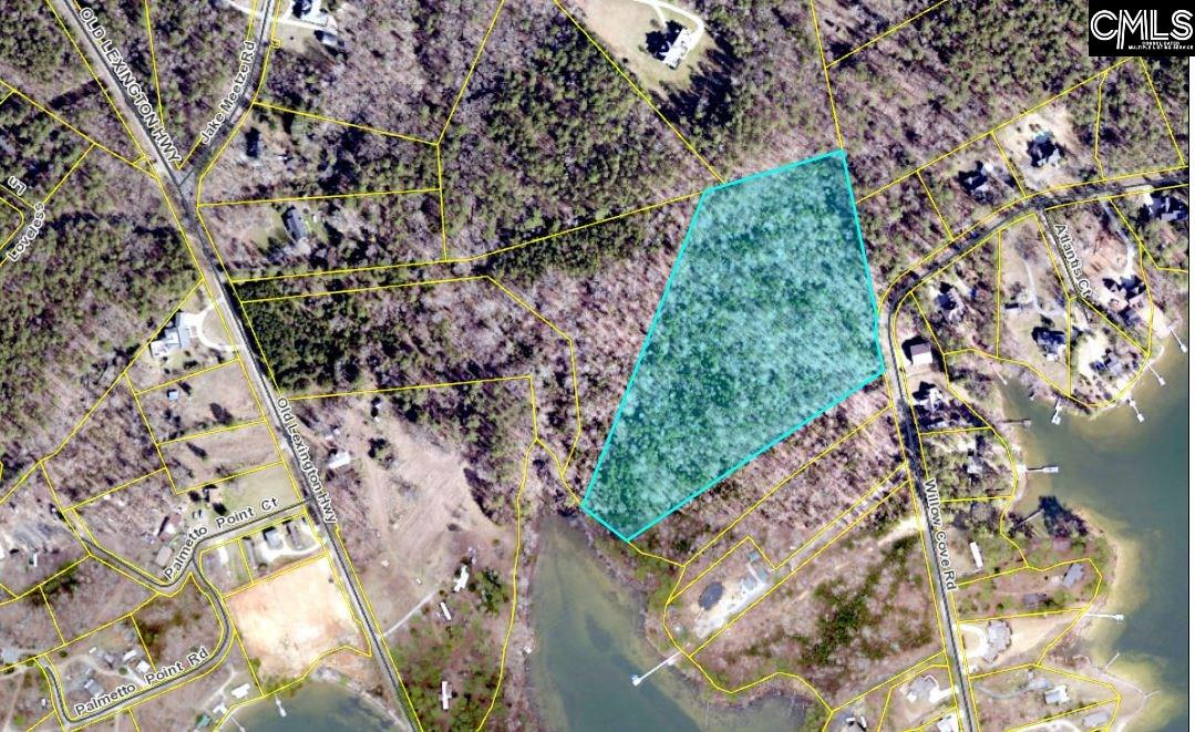 912 Willow Cove #Tract 4 Chapin, SC 29036