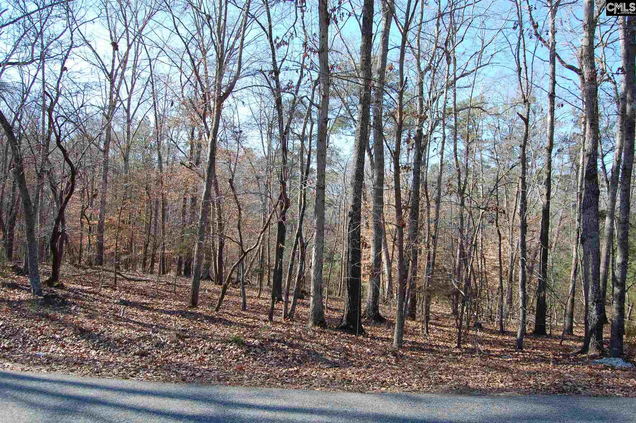 Forest Shores #29 Prosperity, SC 29127-7699