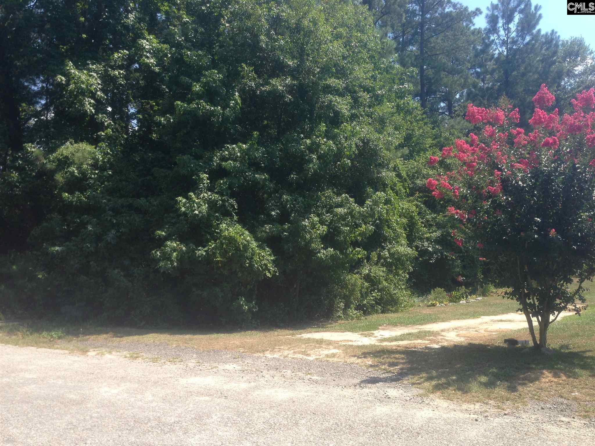 LOT 9 Lownsdale #9 West Columbia, SC 29170