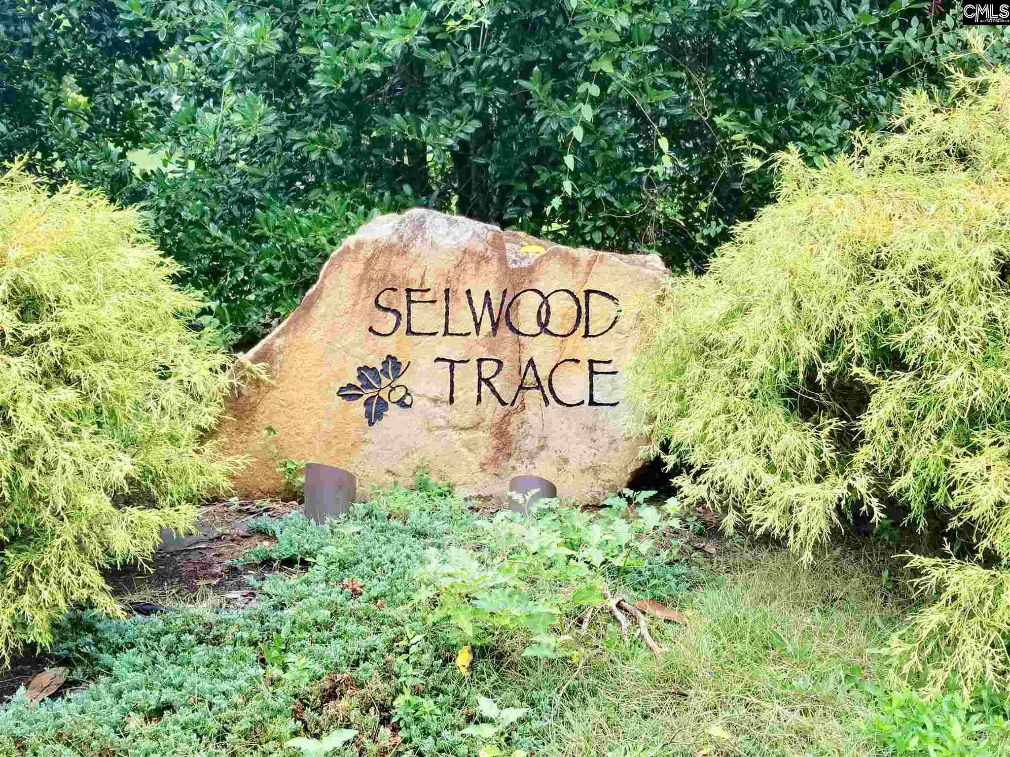 131 Old Selwood #Lot 4 Columbia, SC 29212