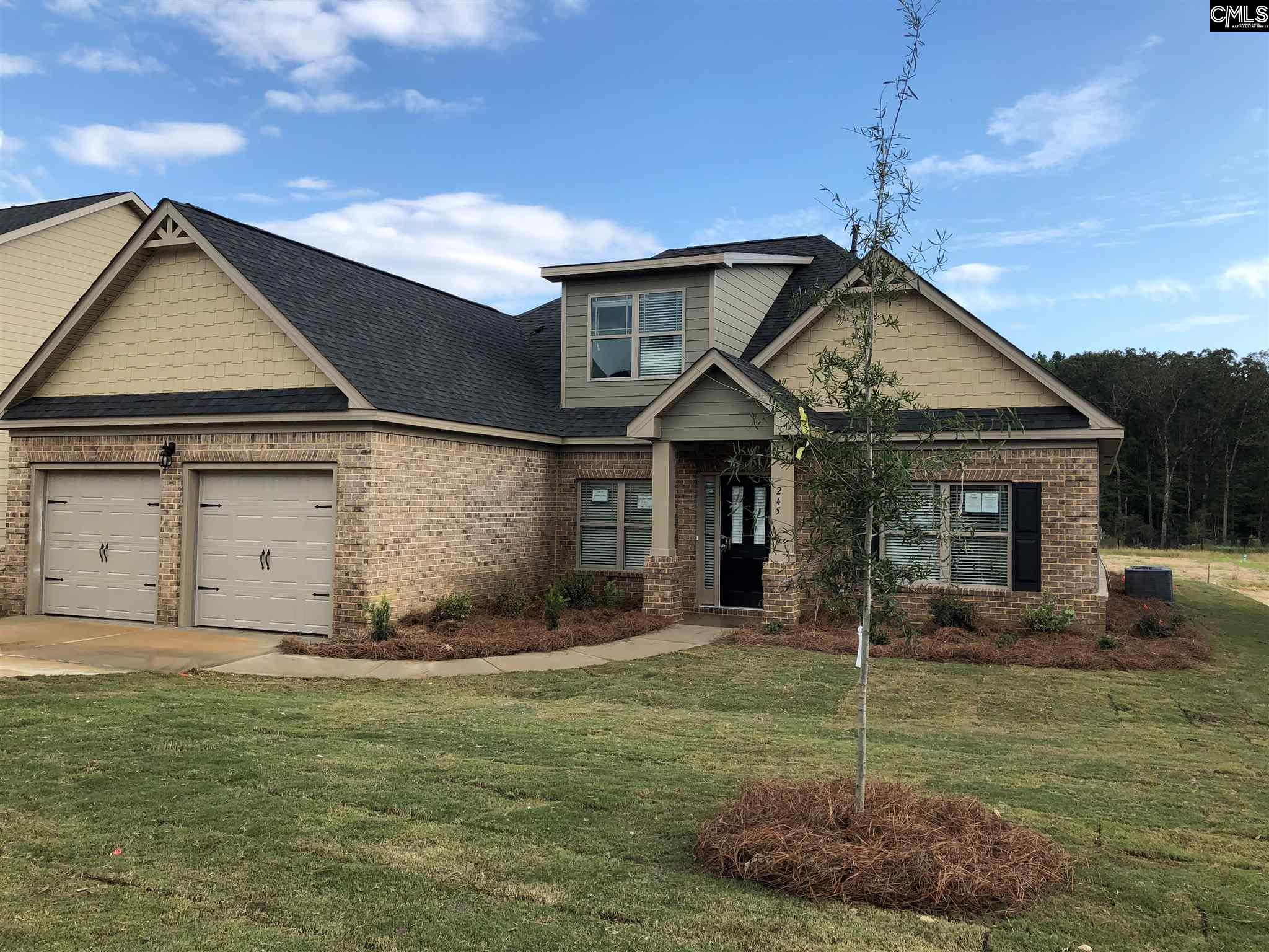 245 Lever Pass #25 Chapin, SC 29036