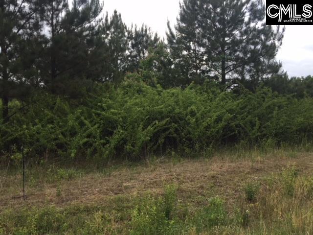 2368 Camp Road Bethune, SC 29009