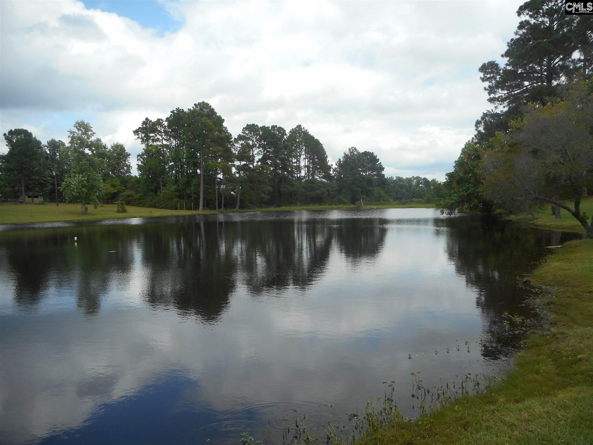 521 Rimer Pond Blythewood, SC 29016-9156