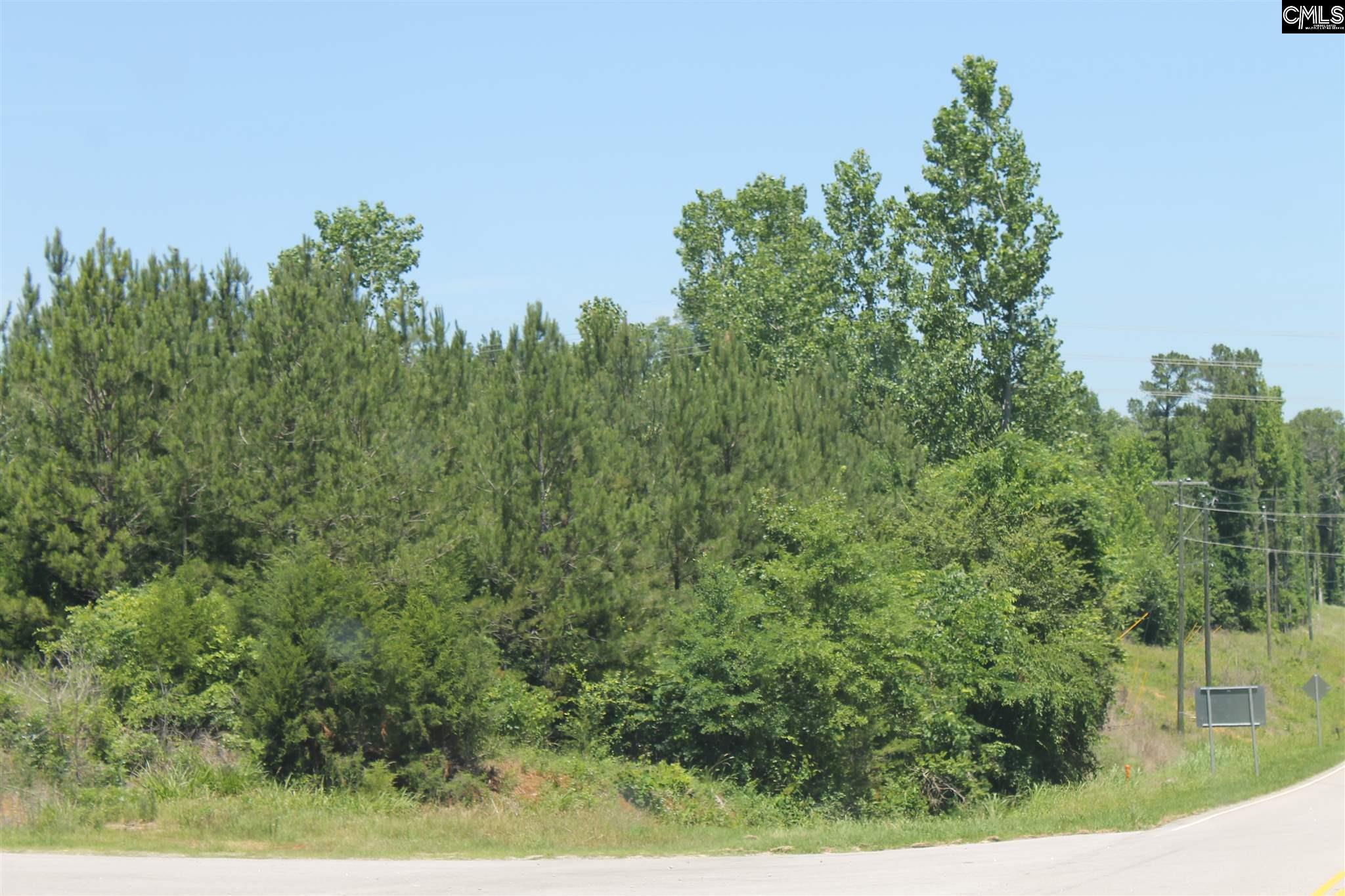 Highway 202 & I-26 Little Mountain, SC 29075