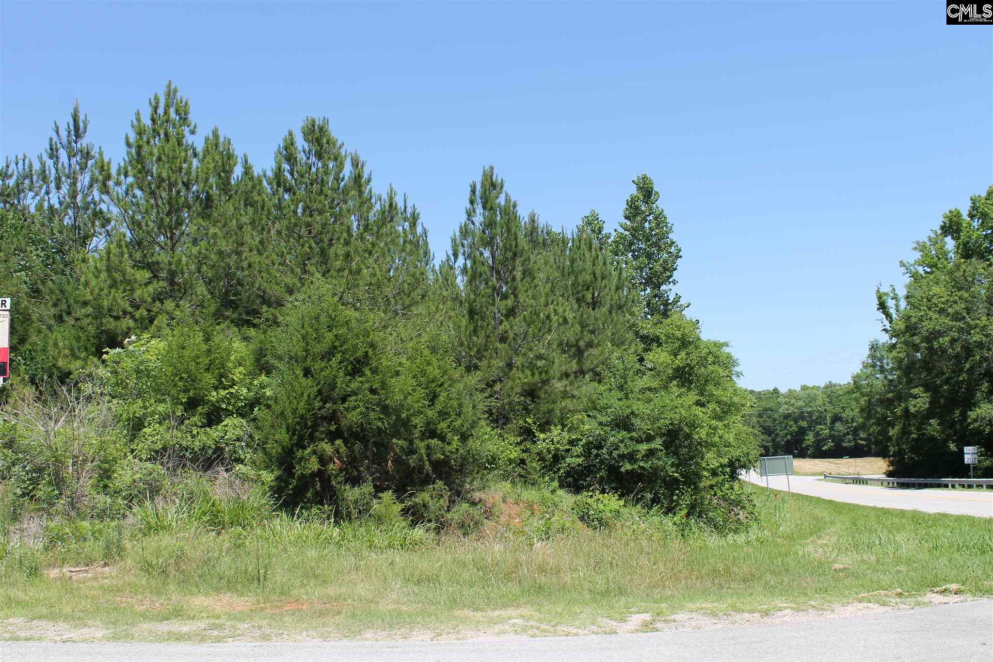 NONE Lots For Sale -  Highway 202 & I-26, Little Mountain, SC - 3