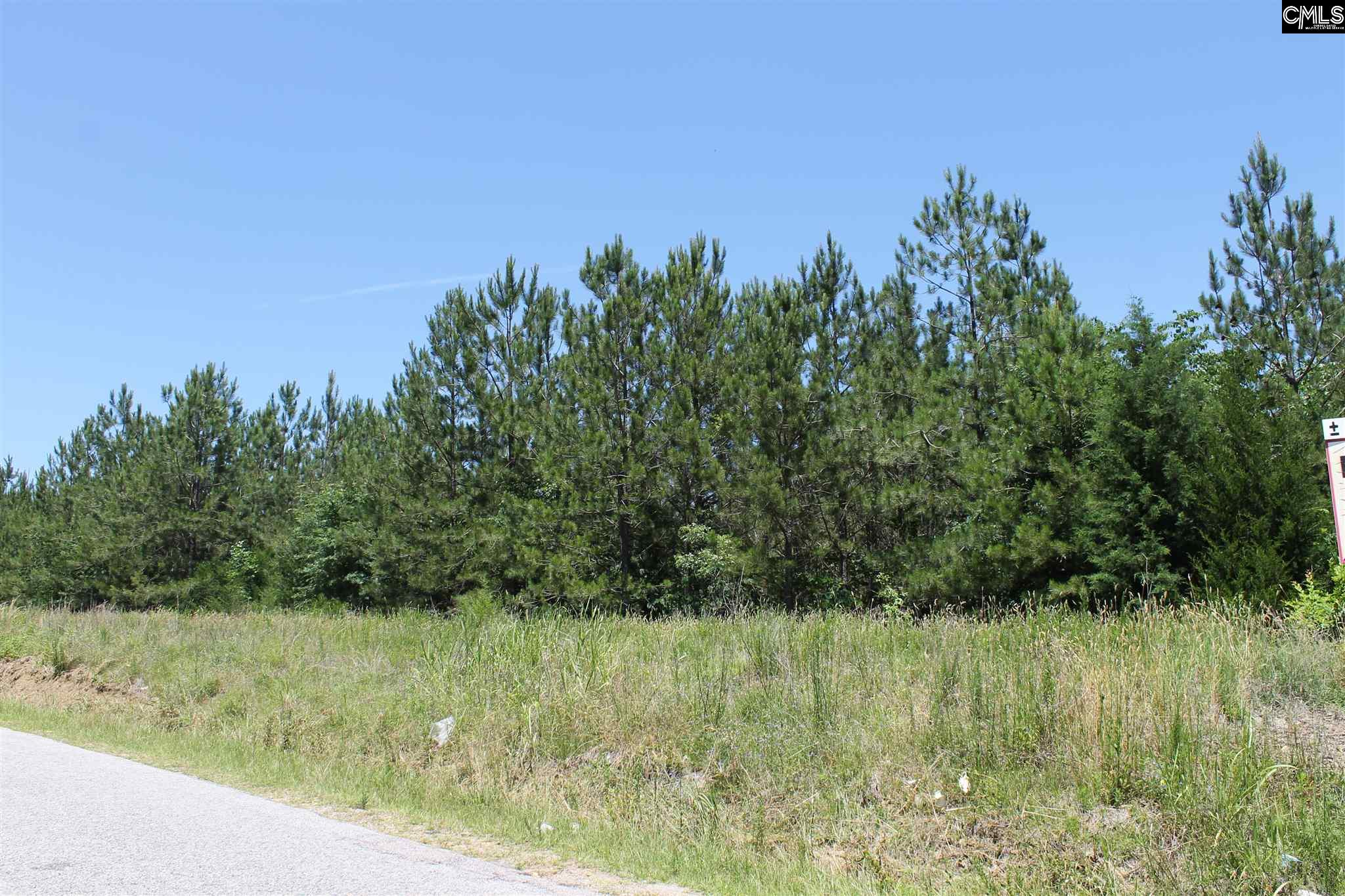 NONE Lots For Sale -  Highway 202 & I-26, Little Mountain, SC - 1