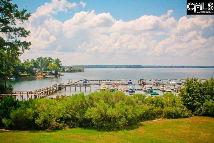 509 Links Pointe Chapin, SC 29036