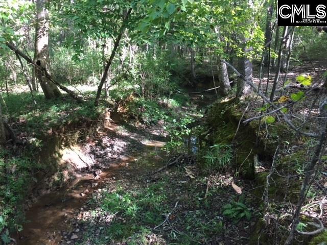 1227 Sease Ridgeway, SC 29130