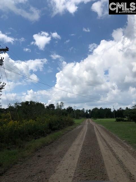 217 Dry Branch Hopkins, SC 29061