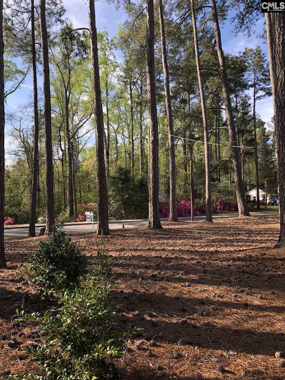 lot #3 205 Azalea #3 Lexington, SC 29072