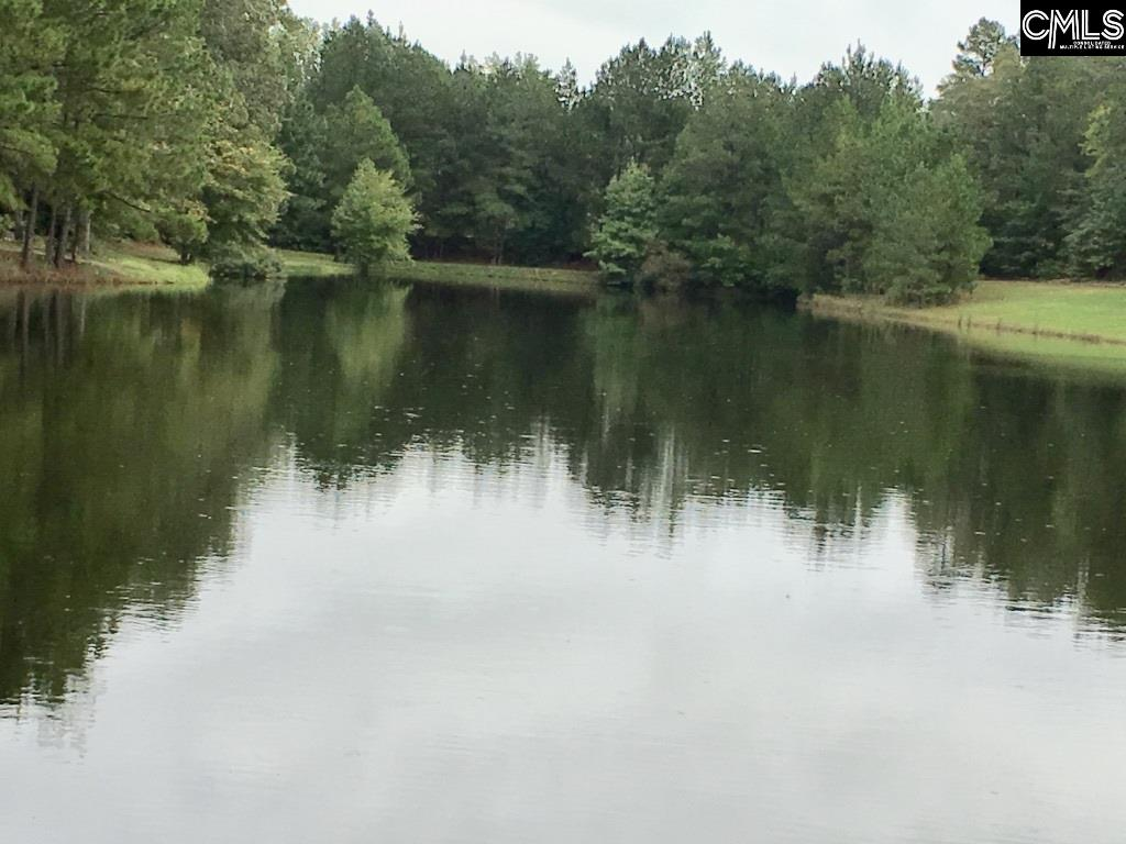 301 Rimer Pond Blythewood, SC 29016
