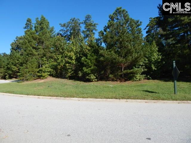216 Bays End Chapin, SC 29036