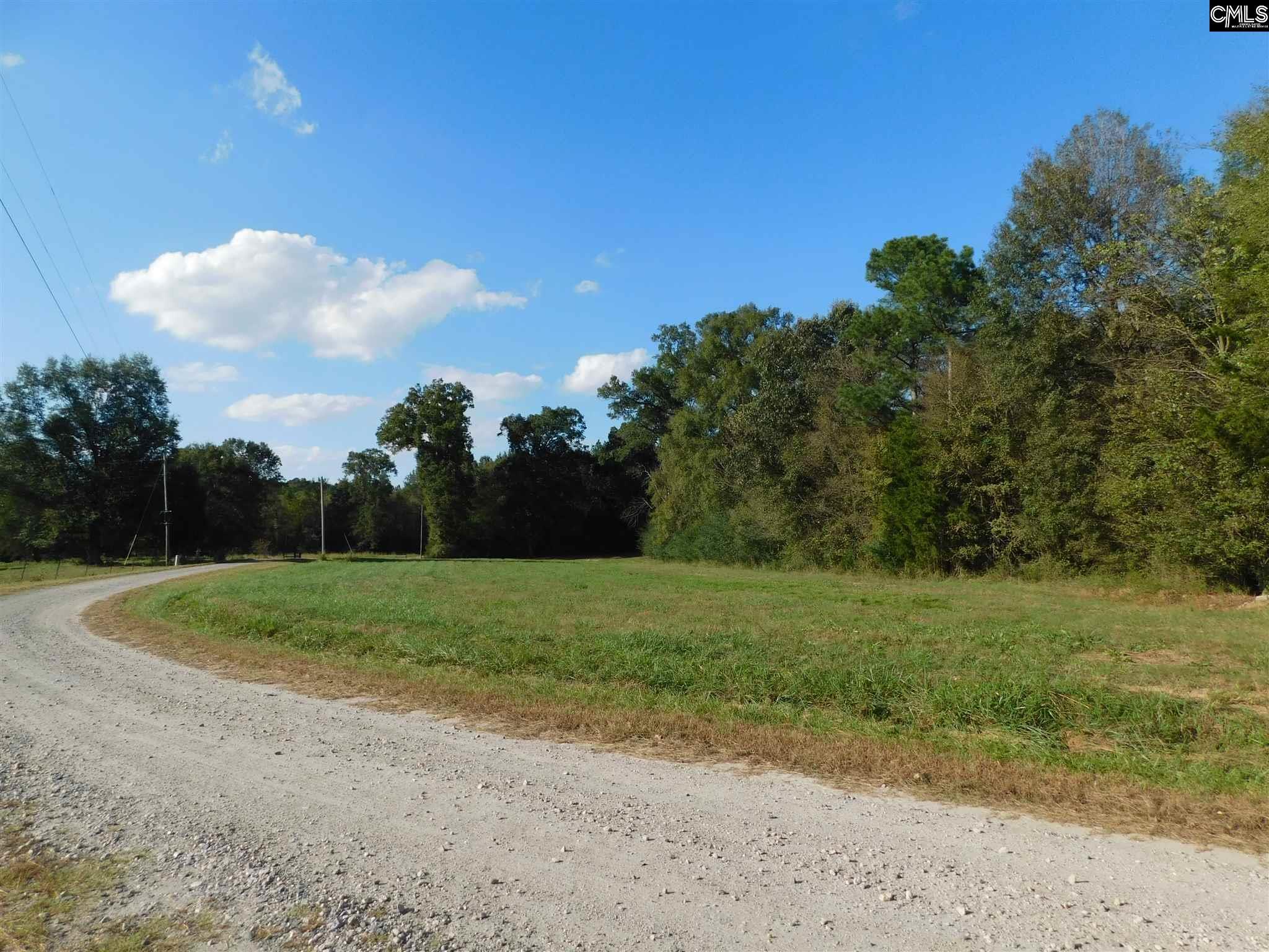 335 Tom Moore Leesville, SC 29070