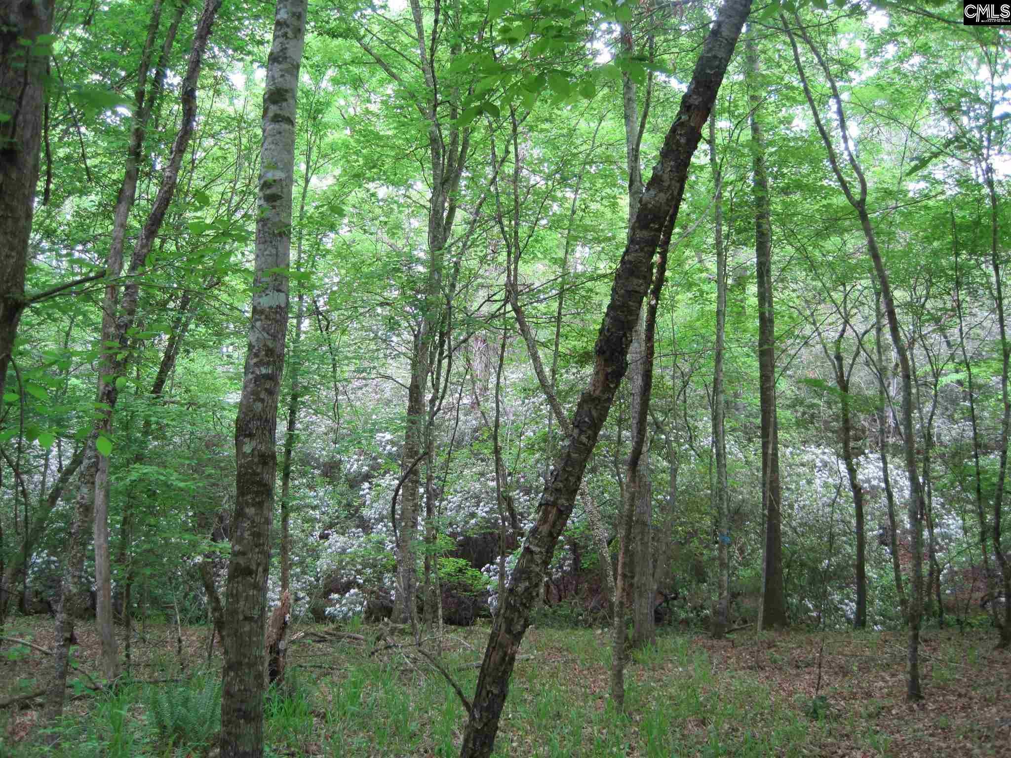 282 Creekside Ridgeway, SC 29130