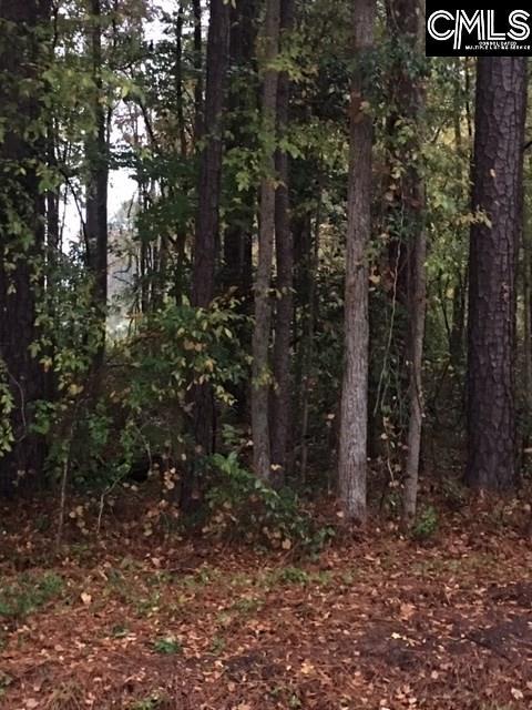 Guppie Leesville, SC 29070