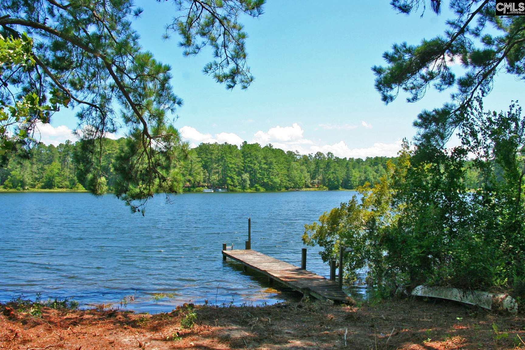 TBD Edisto Lake #48 Wagener, SC 29164