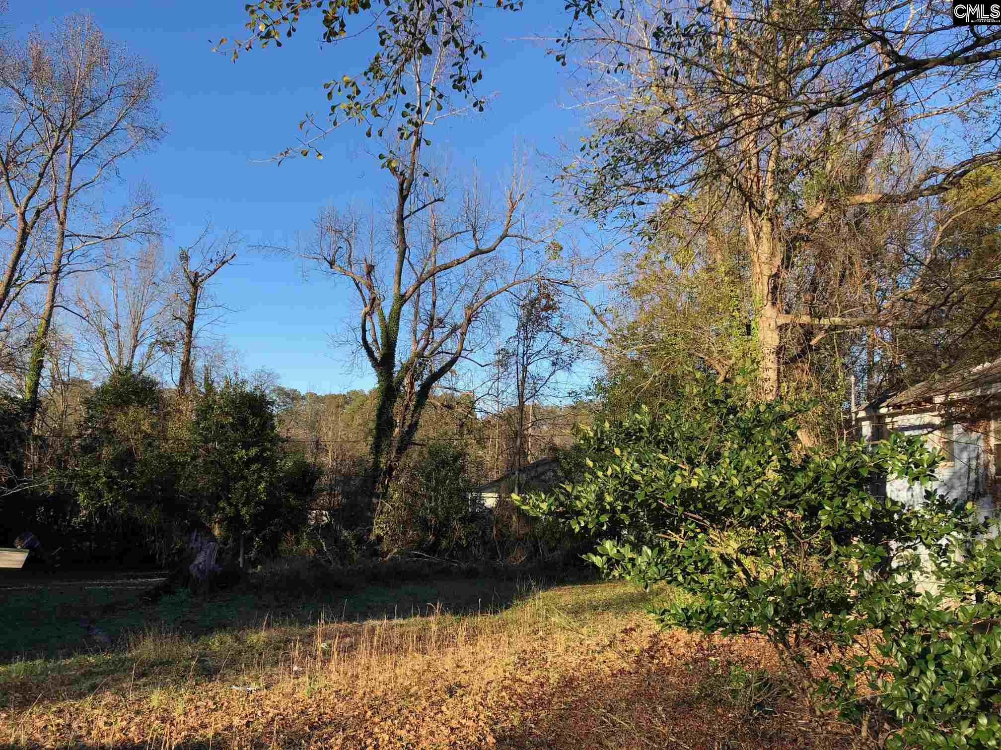 3007 Magnolia Columbia, SC 29204