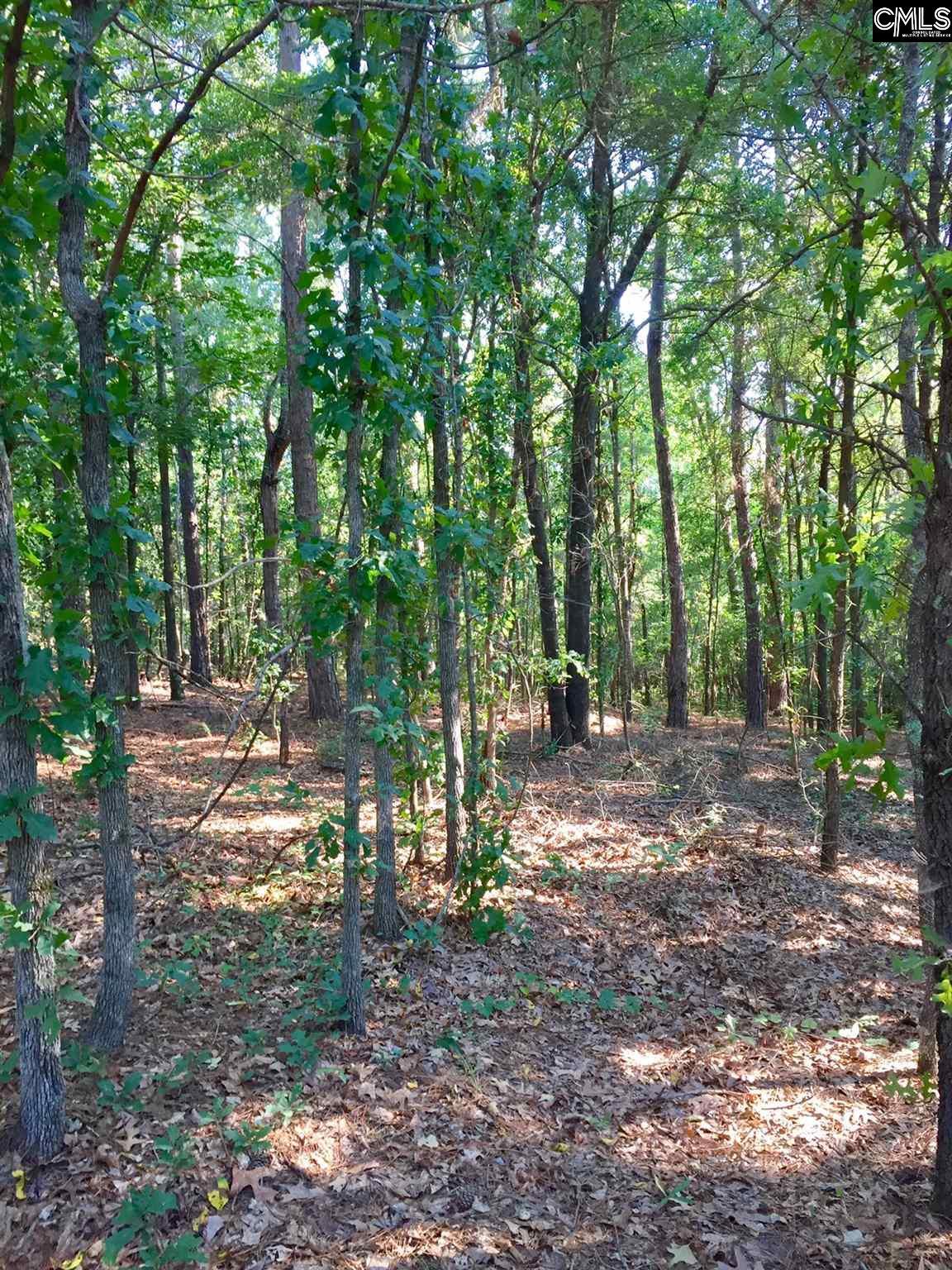 1154 Pine Tree Cassatt, SC 29032