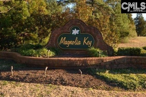 124 Magnolia Key Chapin, SC 29036