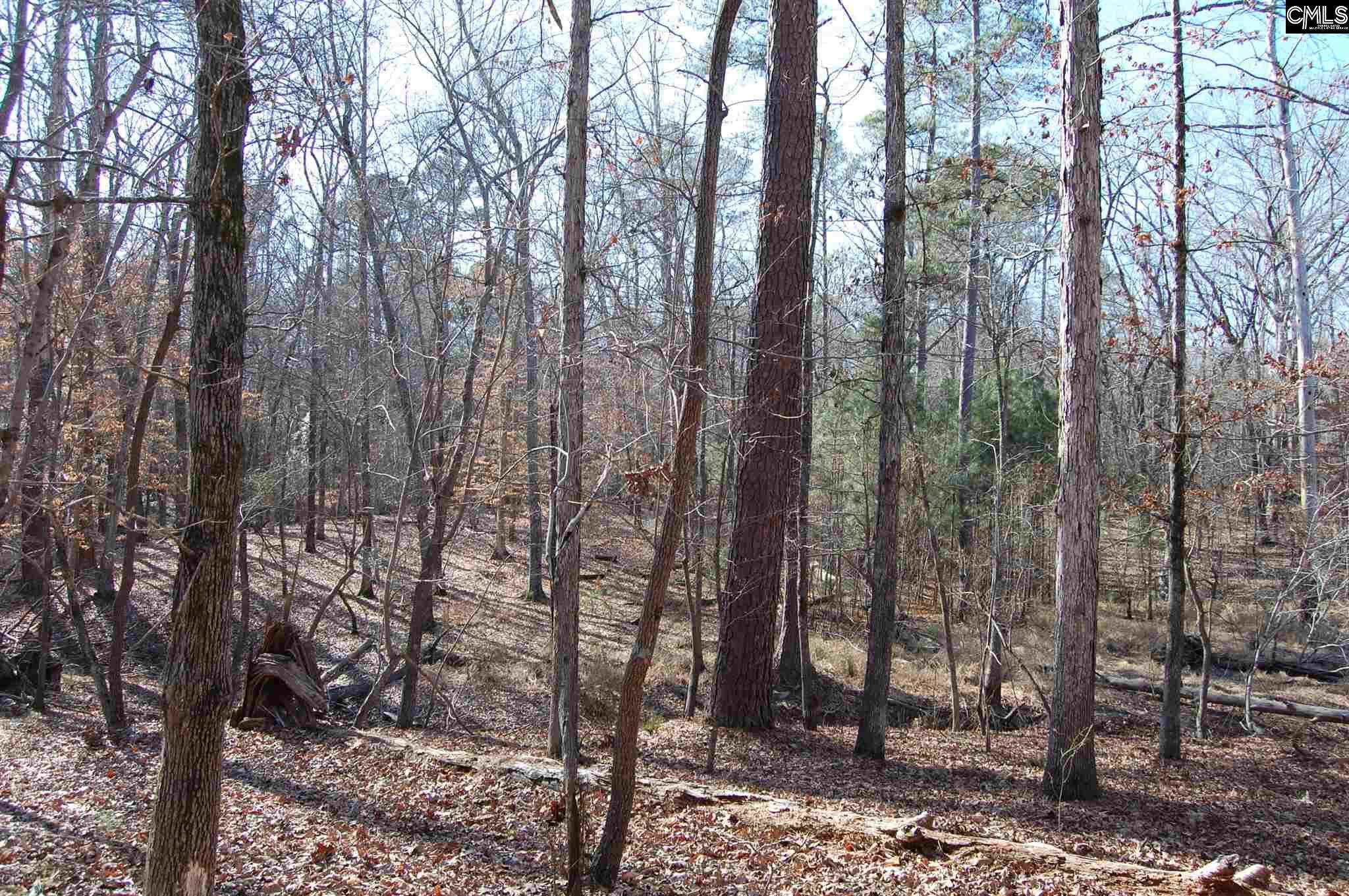 Forest Shores #28 Prosperity, SC 29127
