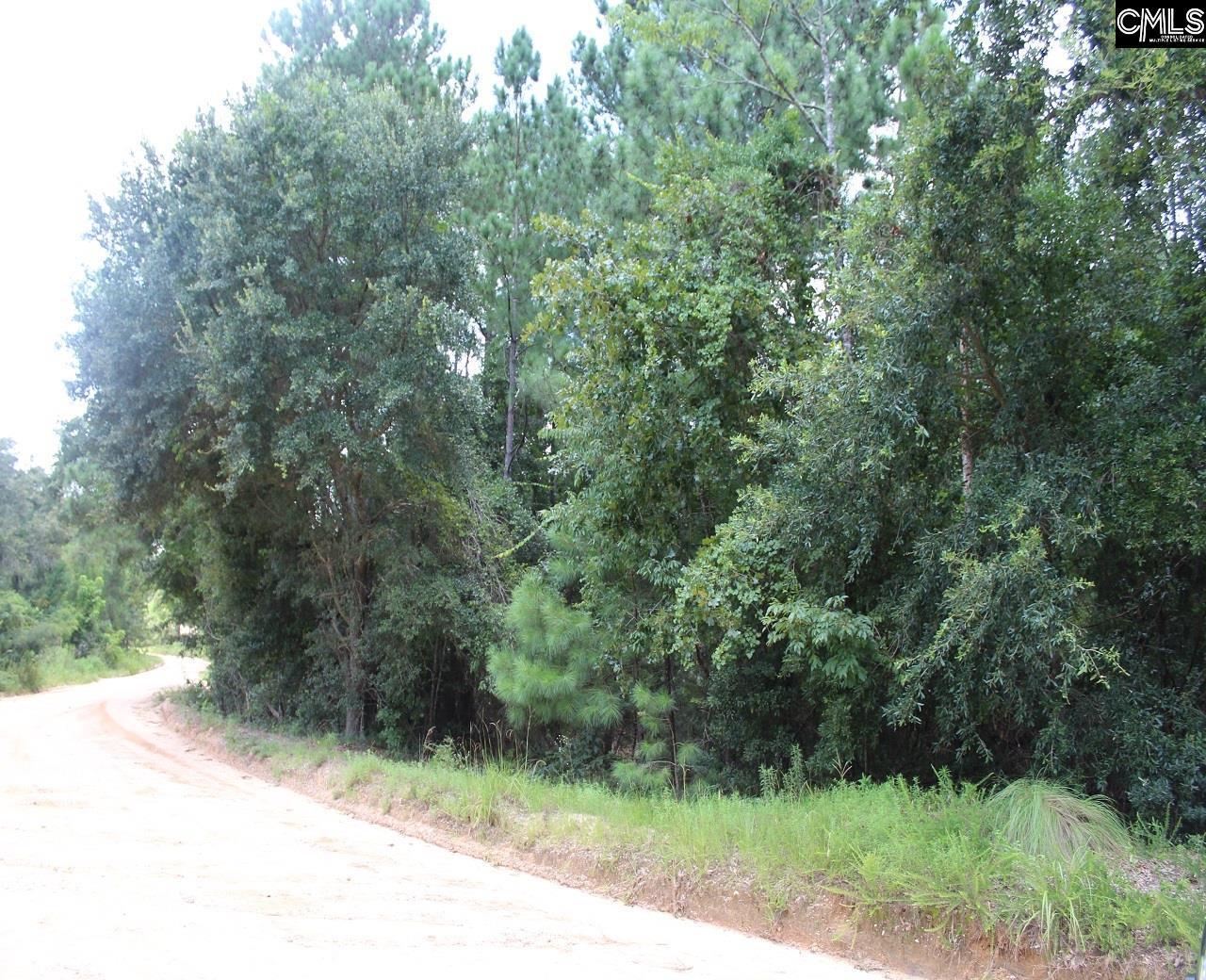 Road Lexington, SC 29073