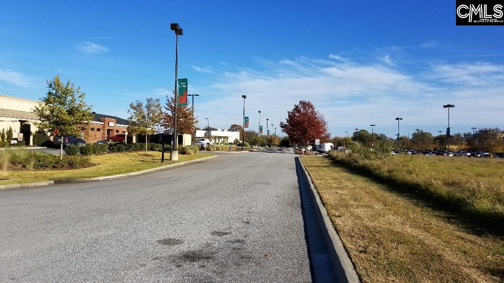 Lot 1 Highway Lexington, SC 29072