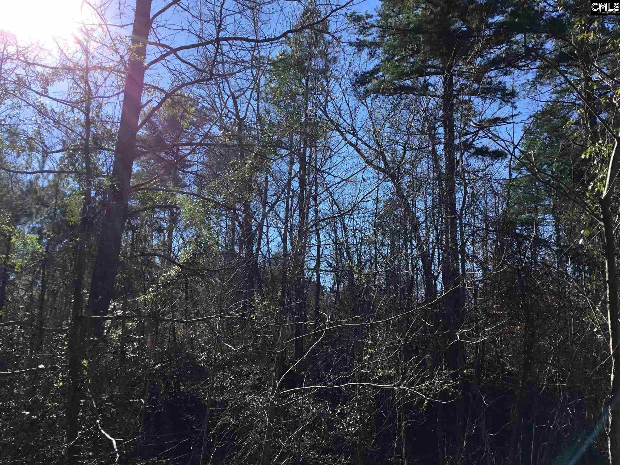 River Ridge Other, SC 29118
