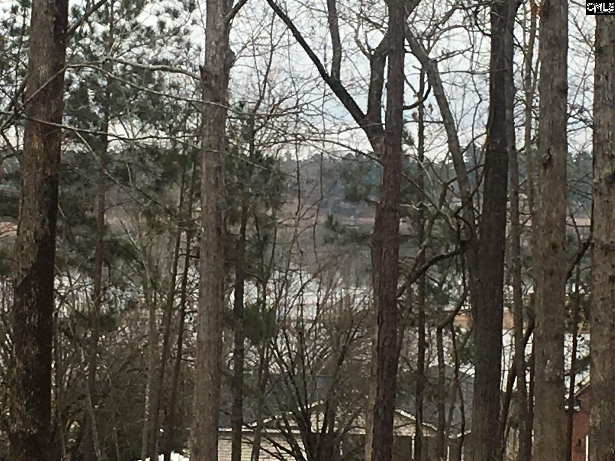 272 Saluda Waters Leesville, SC 29070