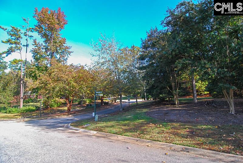 100 Pointe Overlook Chapin, SC 29036