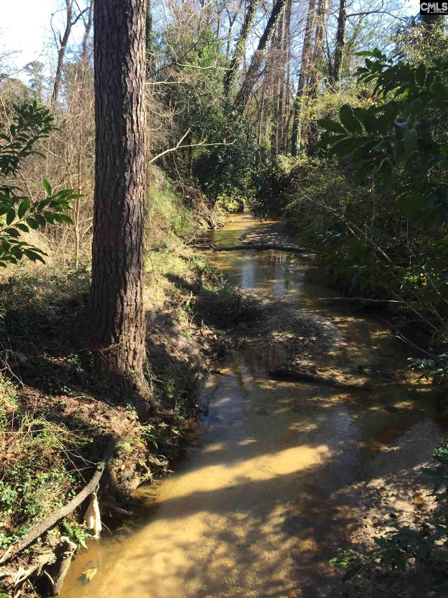 100 Creek Vista Columbia, SC 29206