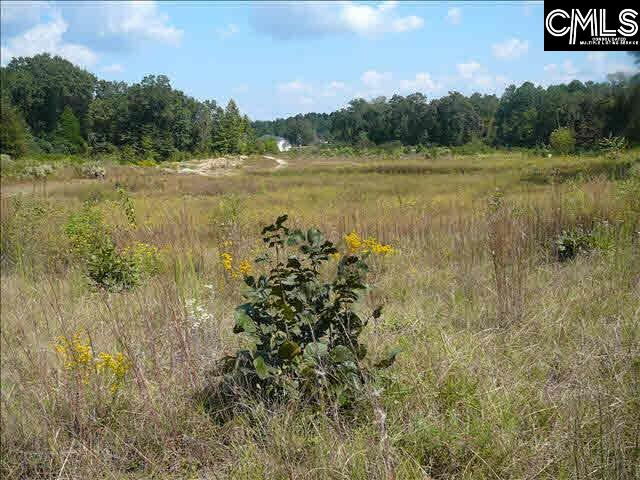1694-1 Highway 1 S UNIT Tract 1 Lugoff, SC 29078