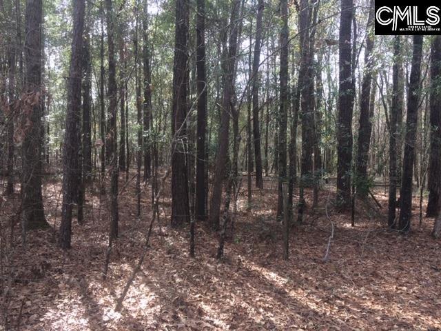 475 Swift Creek Rembert, SC 29128