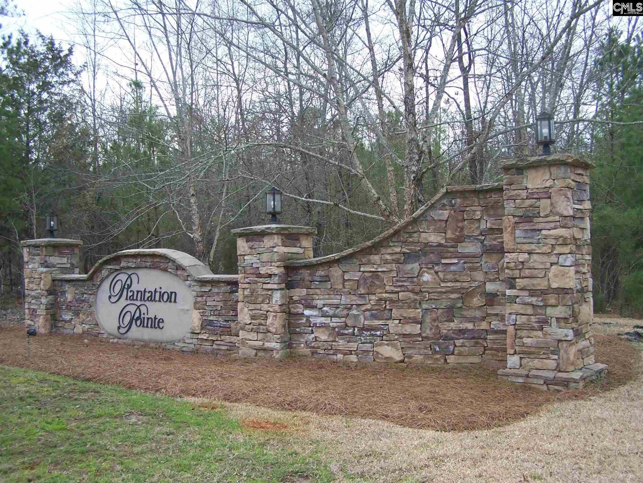 226 Plantation Pointe Ridgeway, SC 29130