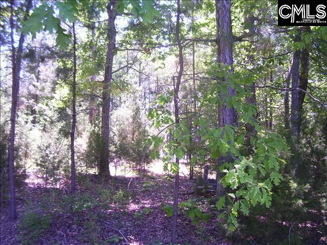Camping Creek Chapin, SC 29036