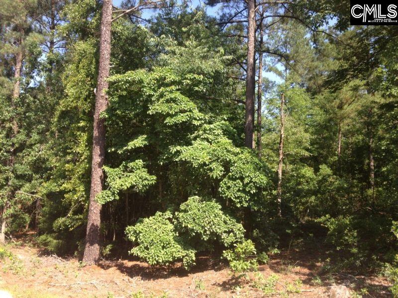 231 Cedar Branch Gilbert, SC 29054