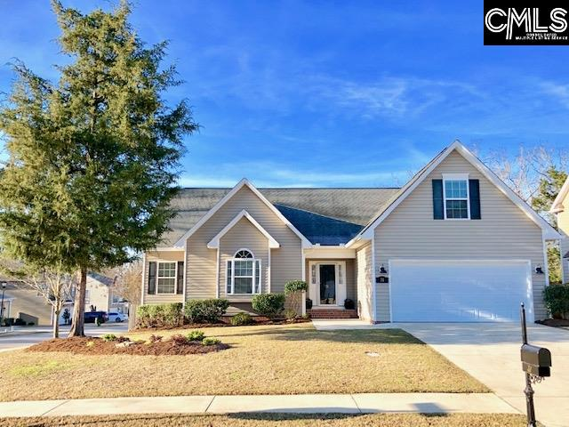 31 Wave Dancer Chapin, SC 29063